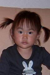 Otoño 2009