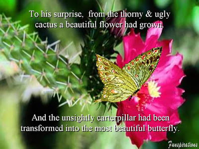 5 - Today's Thorn is Tommarow's Flower