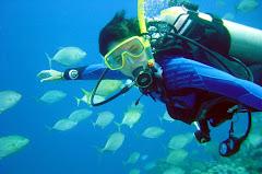 Extreme Diving Venezuela Cursos de Buceo