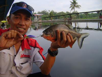 Mancing Ikan Besar Mancing Ikan Super Besar