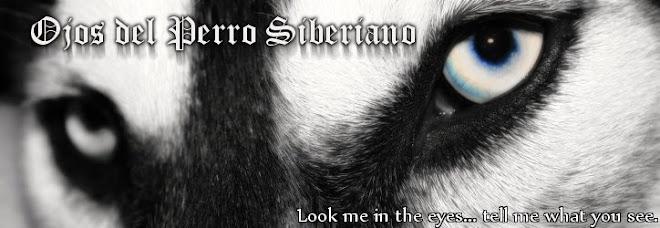 Ojos del Perro Siberiano