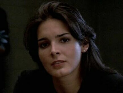 angie harmon law and order