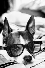 Smart looking.