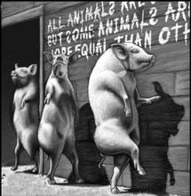 [animal+farm.jpg]