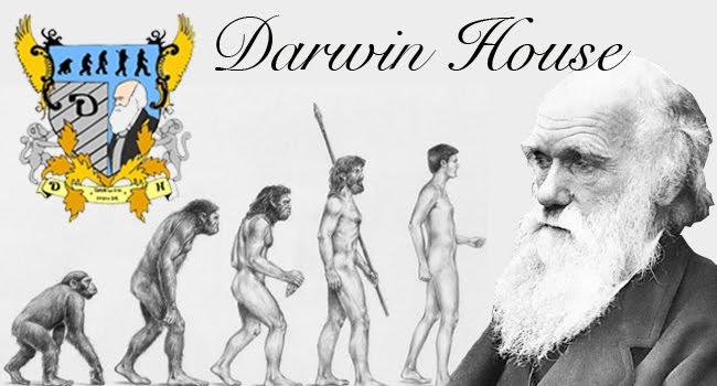 Darwin House Blog
