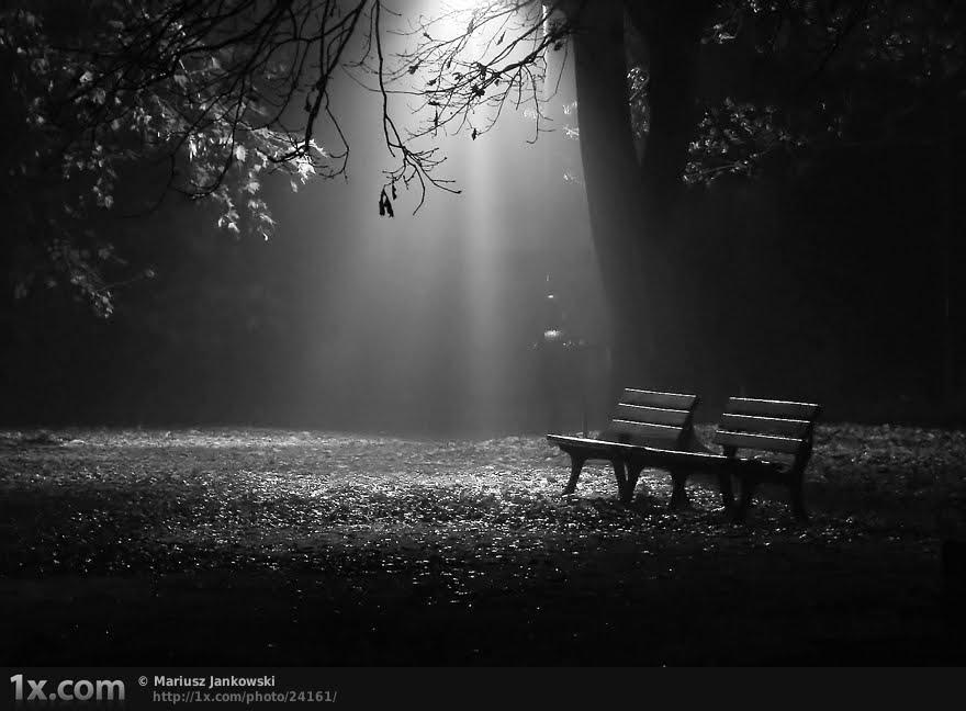 ظهور عکس سیاه و سفید
