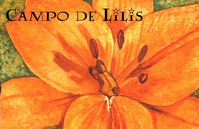 Campo de Lilis