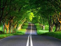 Roadscape