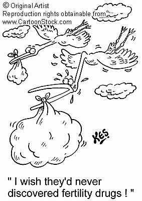 [storks]