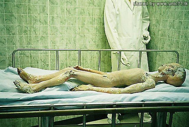 http://1.bp.blogspot.com/_-x7gqq9QJuA/TIM7-dfCIGI/AAAAAAAASt0/XqU5xtKNlUI/s1600/real_alien_14.jpg