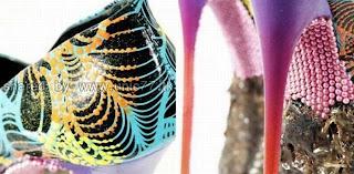 http://1.bp.blogspot.com/_-x7gqq9QJuA/TJsIPdkeisI/AAAAAAAAUmI/7VFNooI9ut4/s1600/smelly_shoes_from_640_06.jpg