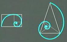 Espiral áurea (11,11') , 5(3,3')