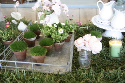 garden party with potted moss favors