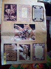 Katalog Exotic Africa 1