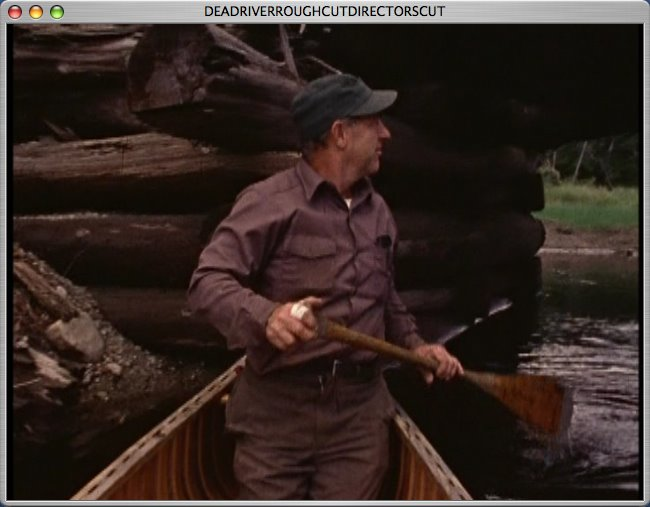 [walt+canoes+under+bridge.jpg]