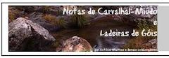NOTAS DE CARVALHAL-MIÚDO E LADEIRAS  DE GÓIS