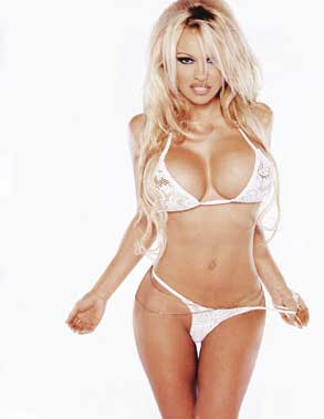 Pamela Anderson by Terry