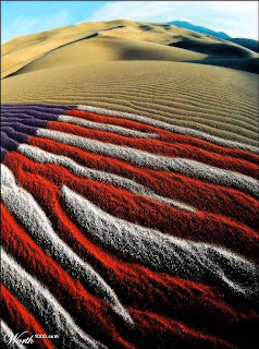 Fourth of July Patriots in the Desert via Worth 1000.com