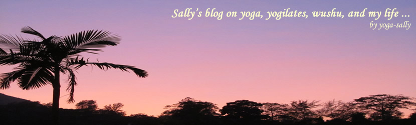 Yoga Sally's blog on yoga, yogilates, wushu, and my life ...