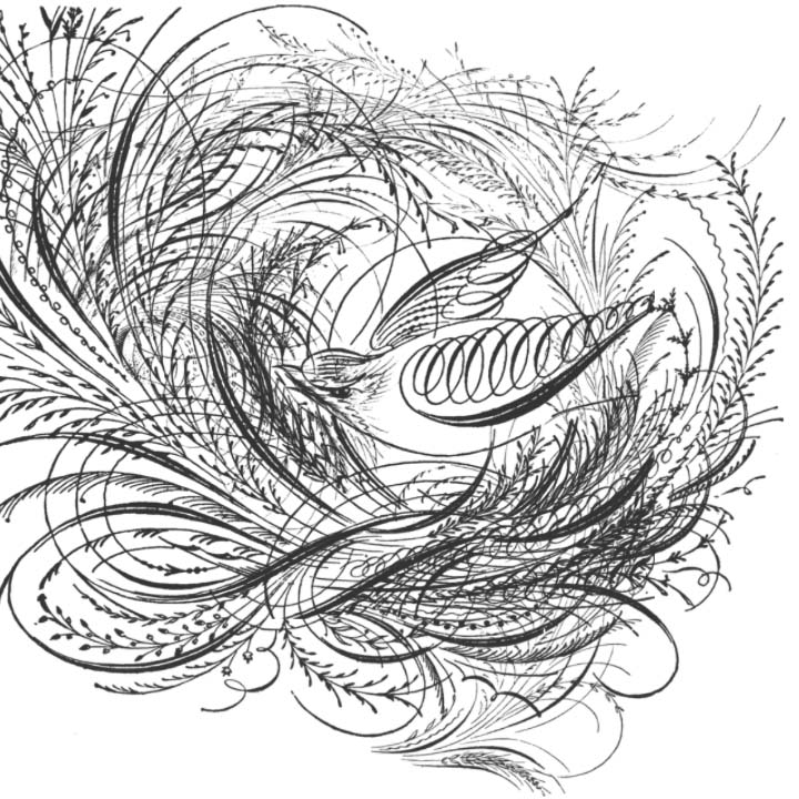 Bleeping Blog Inorganic And Organic Shapes And Forms