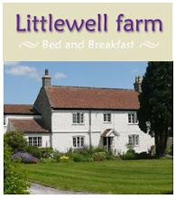Littlewell B and B, Wells, Somerset, UK