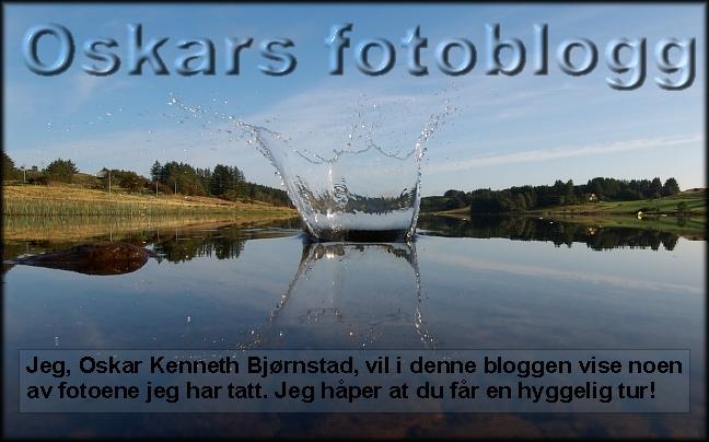 Oskars fotoblogg