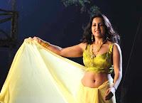 Actress in blouse hot saree still 21