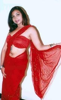 Actress in blouse hot saree still 05