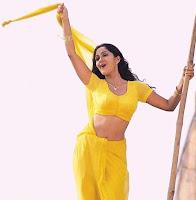 Actress in blouse hot saree still 17