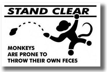 monkey+shit+throwing.jpg
