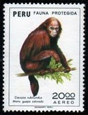 Fauna Protegida: Cacajao rubicundus