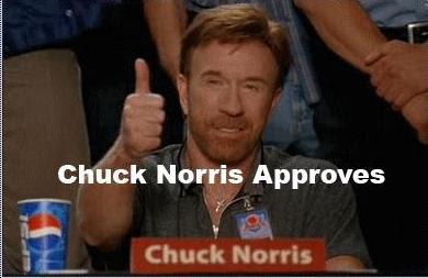 chuck norris approves meme - photo #4