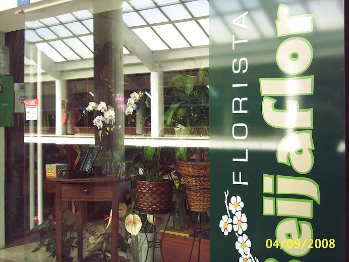 Flores do BEIJAFLOR