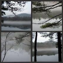 Lake Scenes