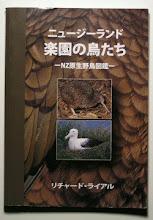 ニュージーランド楽園の鳥たち
