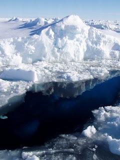 زيارة الى قارة انتاراكتيكا 6.jpg