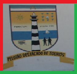 PELOTÃO DE TOURO
