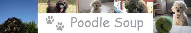 Poodle Soup