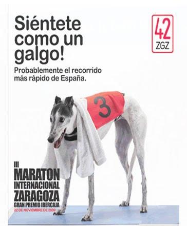 6c6a1320e9b4f sr.ornitorrinco: 3 Maratón de Zaragoza