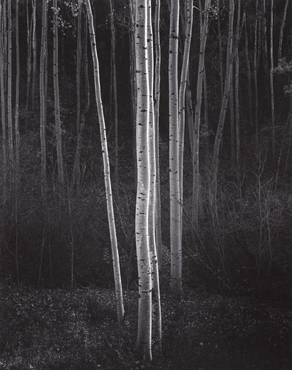 Ansel Adams - Writer, Photographer, and Pianist?