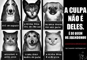 NÃO ao abandono de animais!