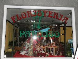 floristería Paraíso, mi amiga y artista Beatriz