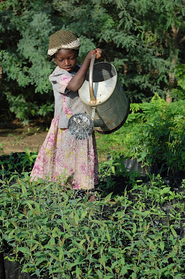Anna Noali watering tree seedlings in Burkina Faso