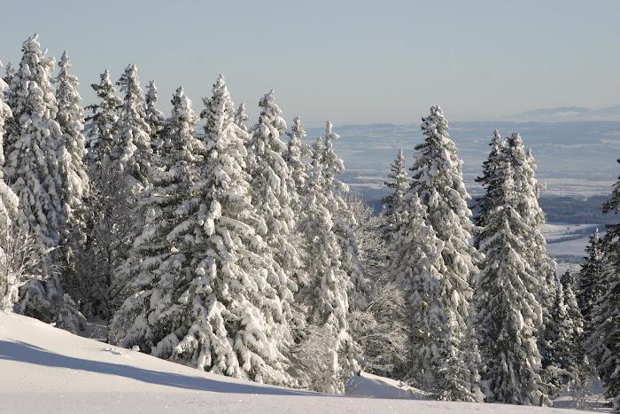 Jura Vaudois, Montagne de la Dôle
