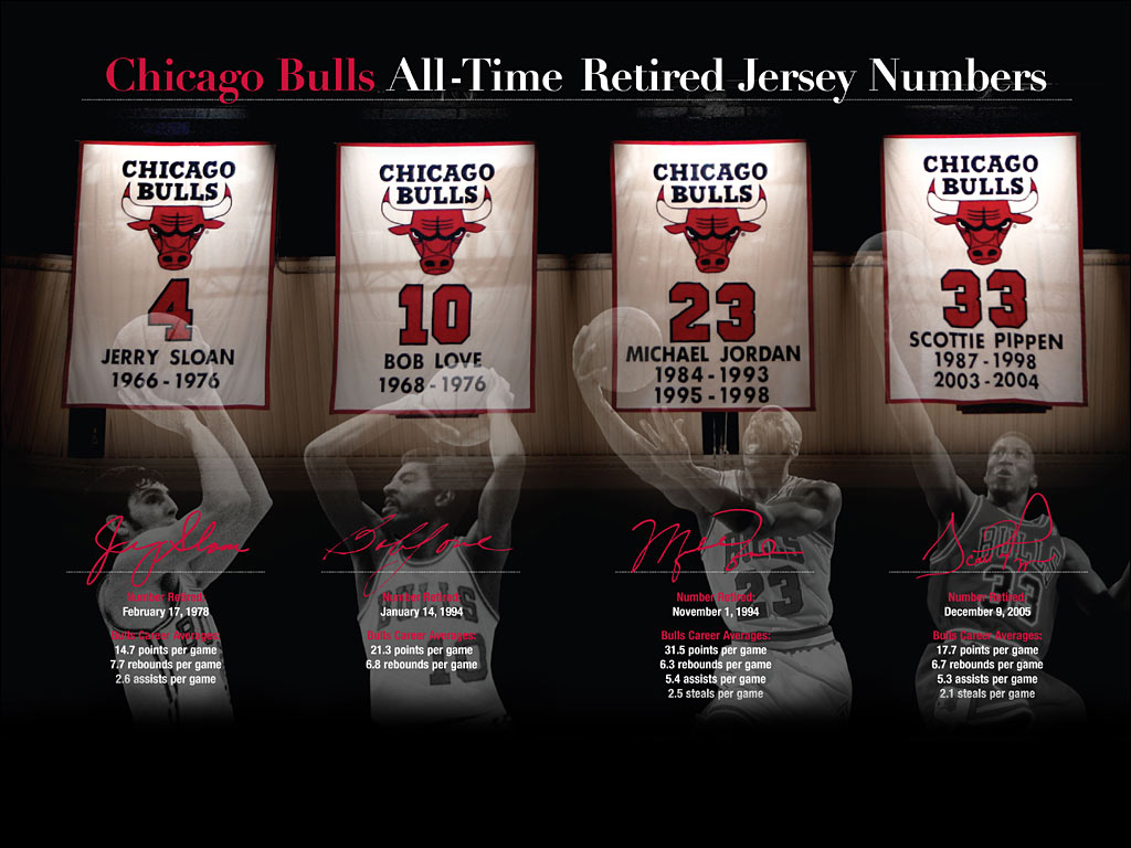 2010 Chicago Bulls Wallpaper