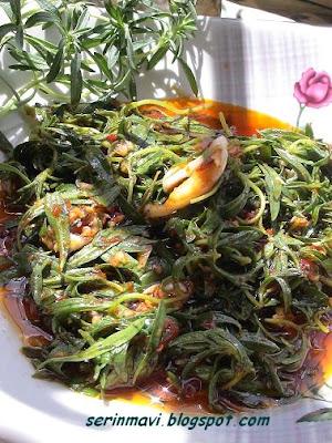 http://1.bp.blogspot.com/_0MyApPPxdX4/RmxRQxOvawI/AAAAAAAAARI/6XFje4FEMUI/s400/kekik+salata.JPG