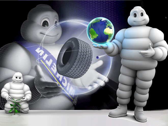 Michelin Lastik Adam
