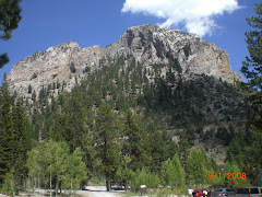 Mt. Charleston - Only 20-30 Minutes from our House