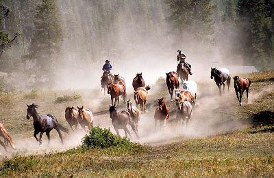 Immagini dal montana usa tutto il mondo di lu for Rimodernato ranch di entrata del ranch