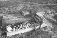 שרידי מצבות בשטח בית העלמין